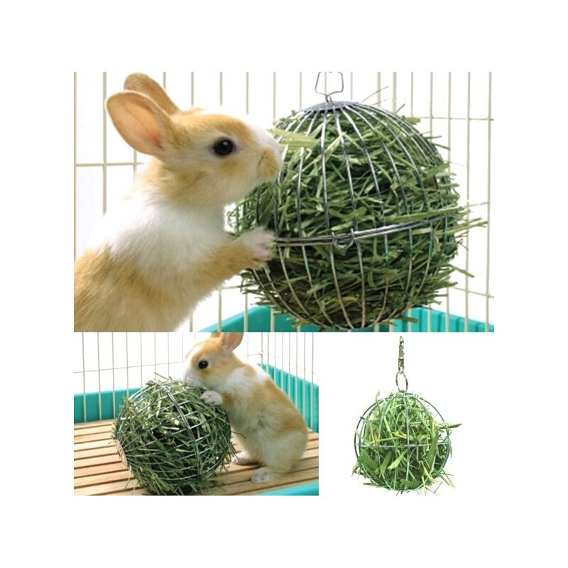 accessoire pour lapin nain