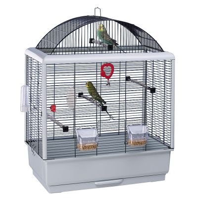 cage canari
