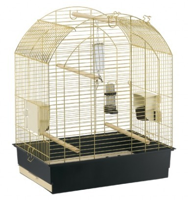 cage inséparable