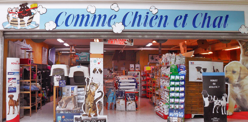 magasin pour chat