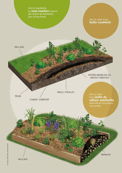 permaculture définition