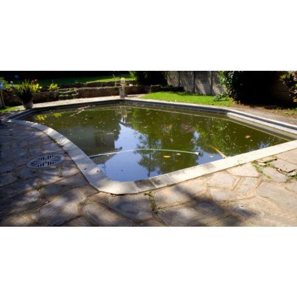 piscine eau verte